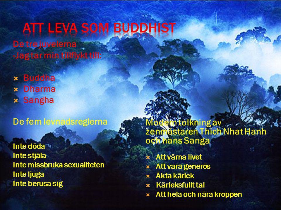De tre juvelerna -Jag tar min tillflykt till:  Buddha  Dharma  Sangha De fem levnadsreglerna Inte döda Inte stjäla Inte missbruka sexualiteten Inte