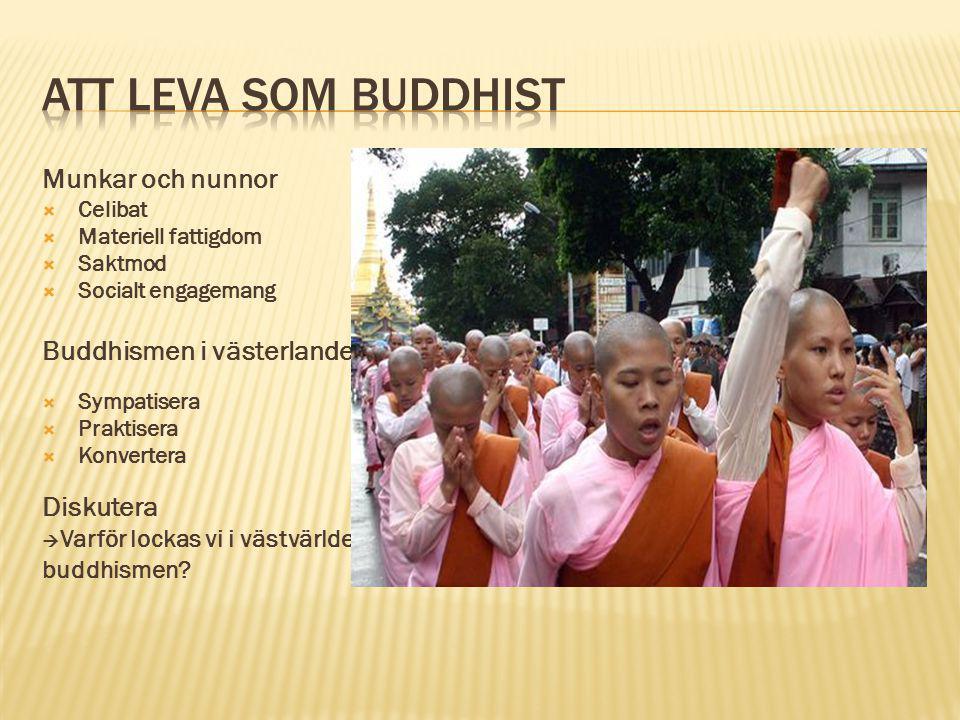 Munkar och nunnor  Celibat  Materiell fattigdom  Saktmod  Socialt engagemang Buddhismen i västerlandet  Sympatisera  Praktisera  Konvertera Dis