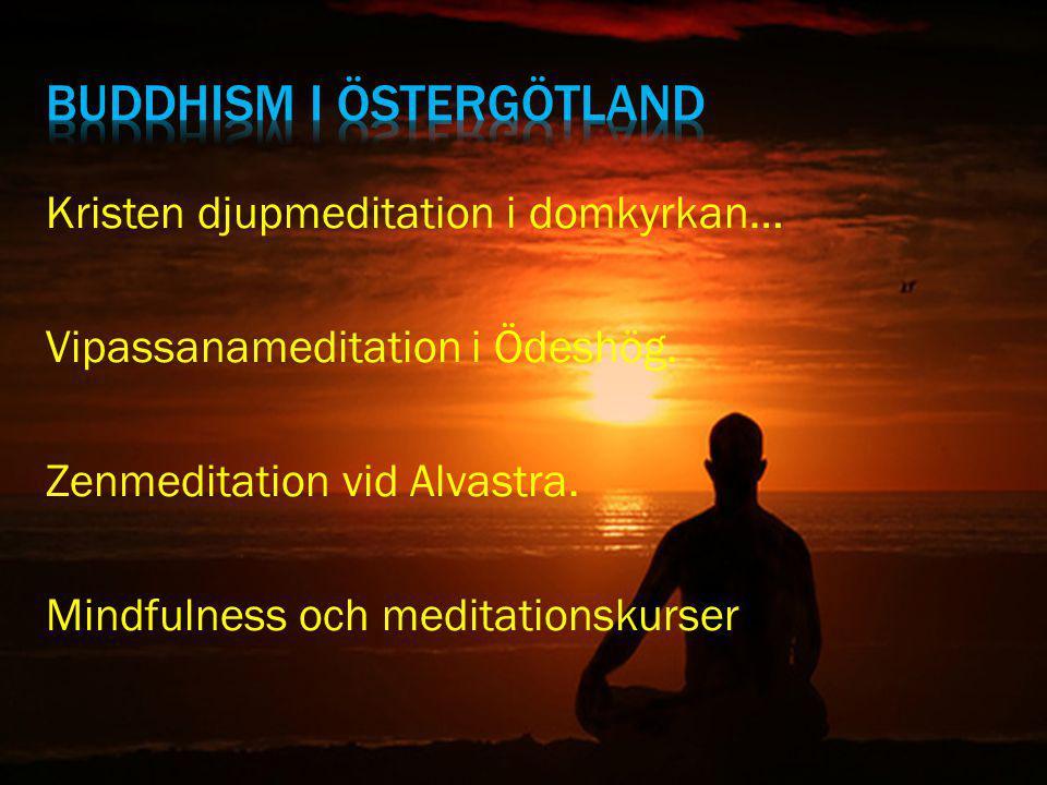 Kristen djupmeditation i domkyrkan… Vipassanameditation i Ödeshög. Zenmeditation vid Alvastra. Mindfulness och meditationskurser