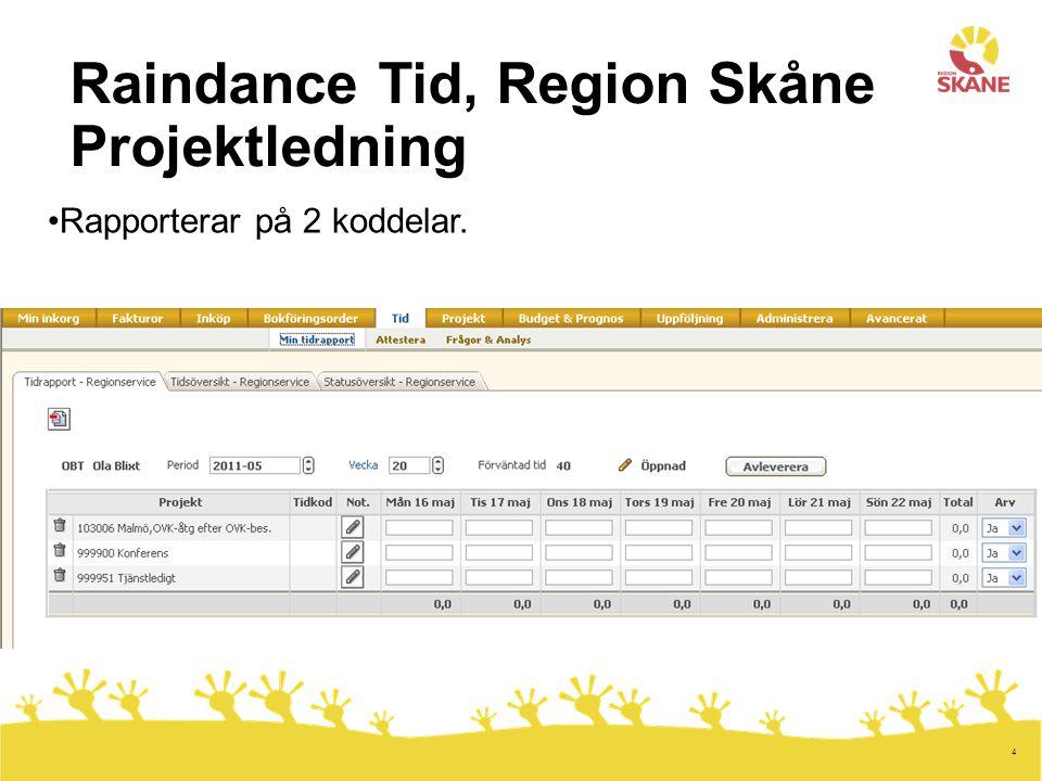 4 Raindance Tid, Region Skåne Projektledning Rapporterar på 2 koddelar.