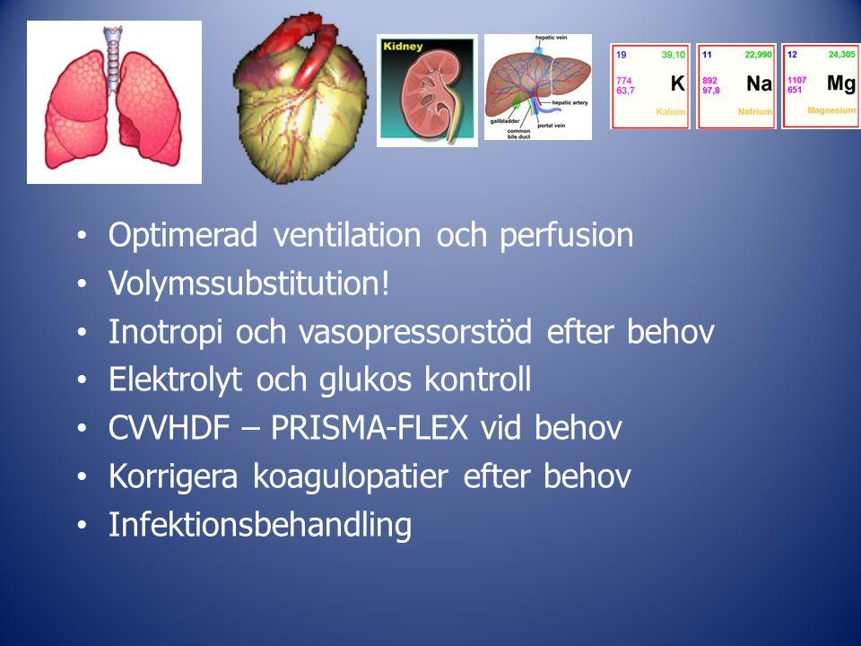 Optimerad ventilation och perfusion Volymssubstitution! Inotropi och vasopressorstöd efter behov Elektrolyt och glukos kontroll CVVHDF – PRISMA-FLEX v