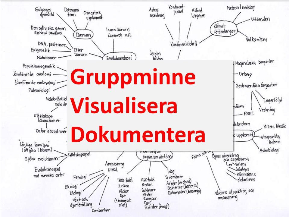 Gruppminne Visualisera Dokumentera Gruppminne Visualisera Dokumentera