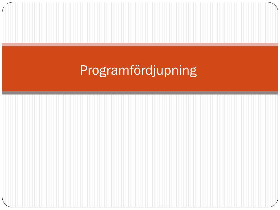 Programfördjupning