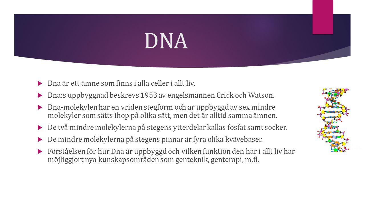 DNA  Dna är ett ämne som finns i alla celler i allt liv.  Dna:s uppbyggnad beskrevs 1953 av engelsmännen Crick och Watson.  Dna-molekylen har en vr