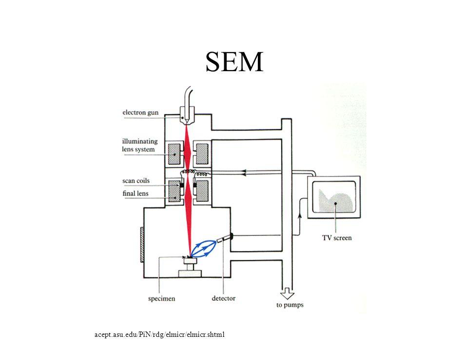 SEM acept.asu.edu/PiN/rdg/elmicr/elmicr.shtml