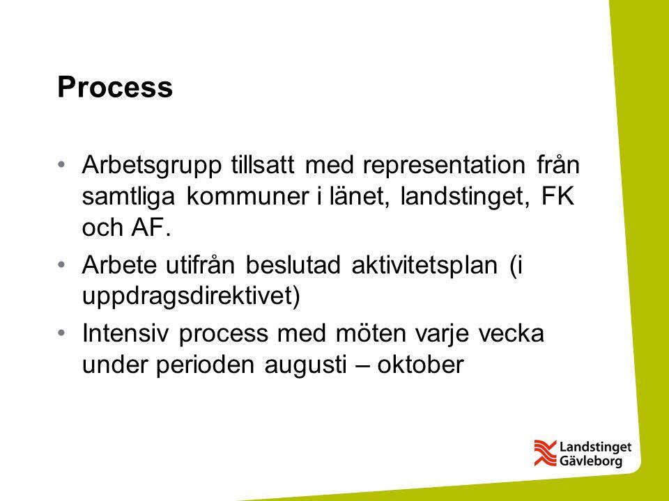 Process Arbetsgrupp tillsatt med representation från samtliga kommuner i länet, landstinget, FK och AF. Arbete utifrån beslutad aktivitetsplan (i uppd