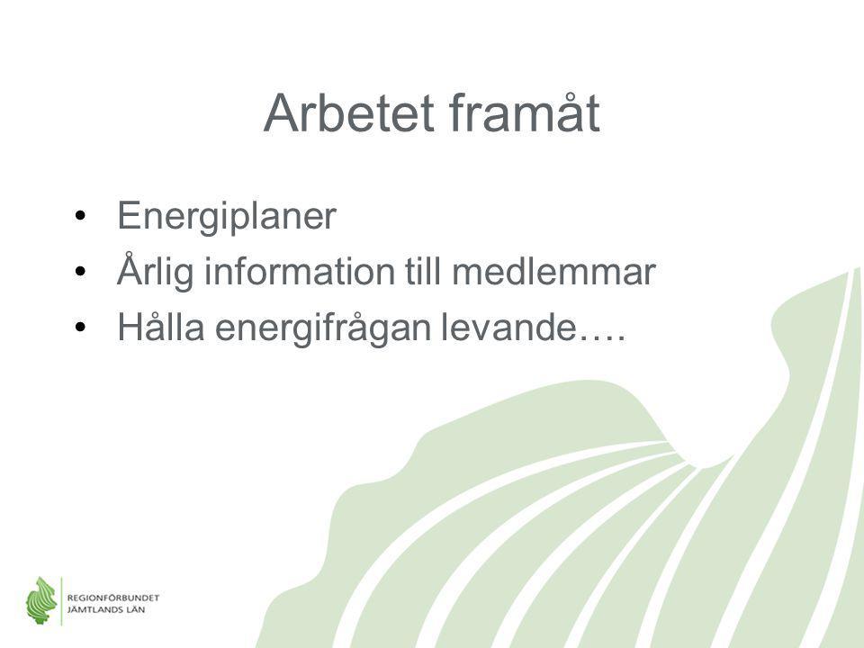 Arbetet framåt Energiplaner Årlig information till medlemmar Hålla energifrågan levande….