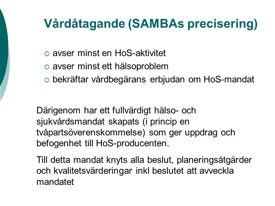 Vårdåtagande (SAMBAs precisering)  avser minst en HoS-aktivitet  avser minst ett hälsoproblem  bekräftar vårdbegärans erbjudan om HoS-mandat Därigenom har ett fullvärdigt hälso- och sjukvårdsmandat skapats (i princip en tvåpartsöverenskommelse) som ger uppdrag och befogenhet till HoS-producenten.