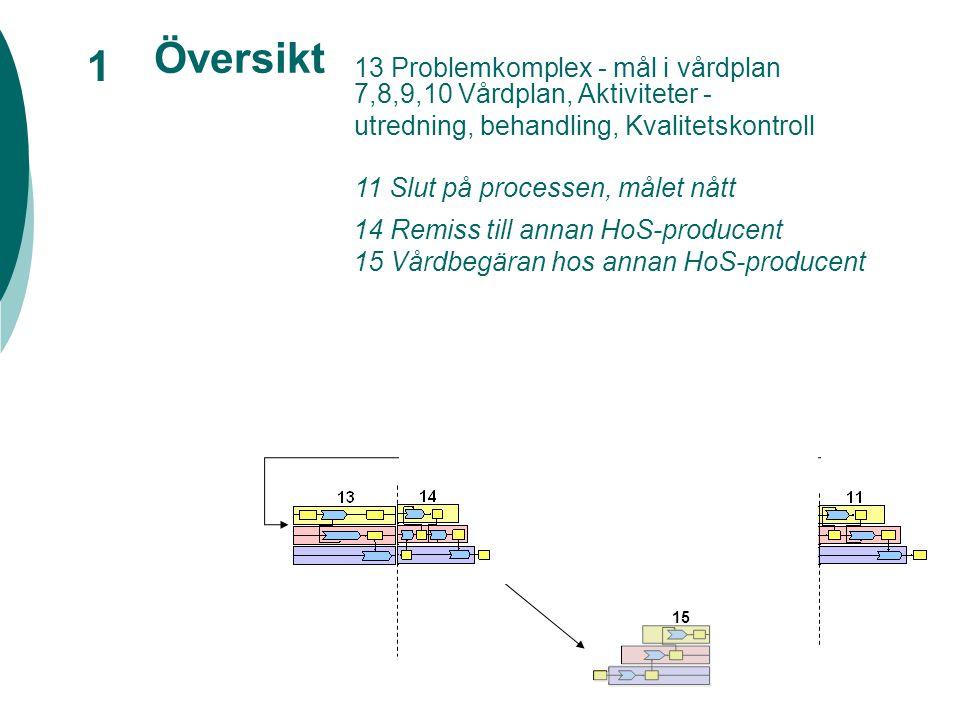 Översikt 1 15 7,8,9,10 Vårdplan, Aktiviteter - utredning, behandling, Kvalitetskontroll 12 Processvarvet slut, målet ej nått 13 Problemkomplex - mål i