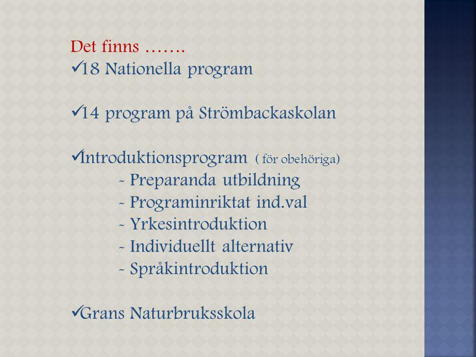 Det finns ……. 18 Nationella program 14 program på Strömbackaskolan Introduktionsprogram ( för obehöriga) - Preparanda utbildning - Programinriktat ind