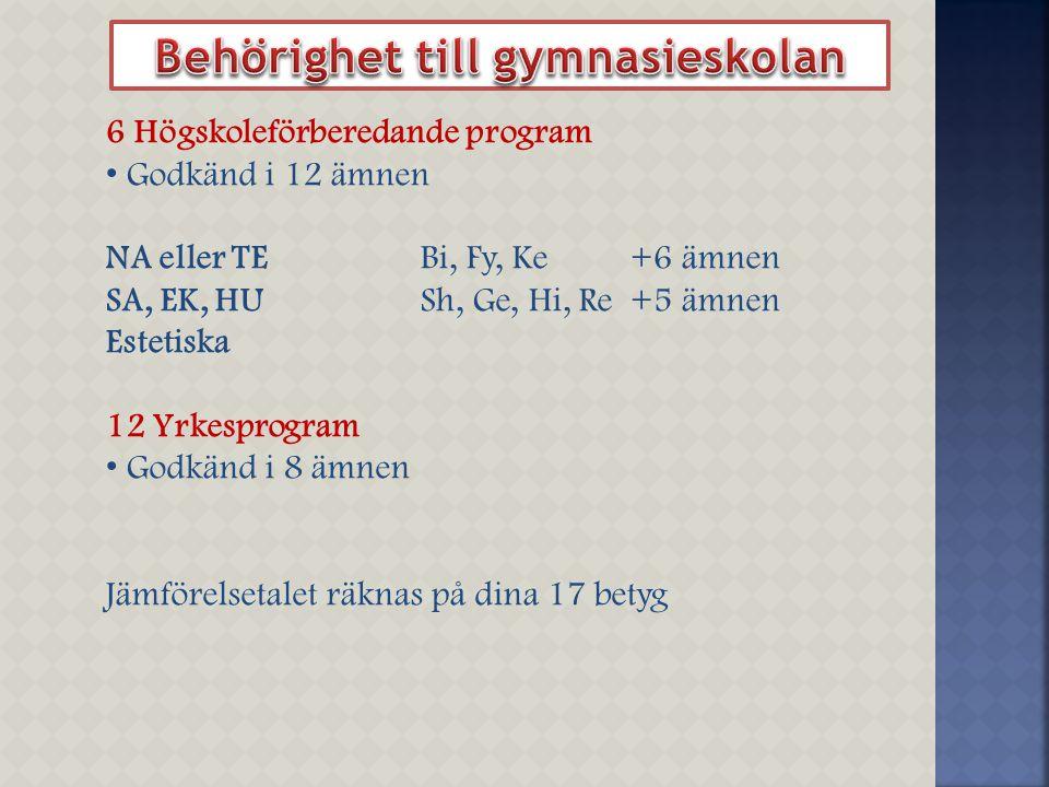 6 Högskoleförberedande program Godkänd i 12 ämnen NA eller TEBi, Fy, Ke+6 ämnen SA, EK, HUSh, Ge, Hi, Re+5 ämnen Estetiska 12 Yrkesprogram Godkänd i 8