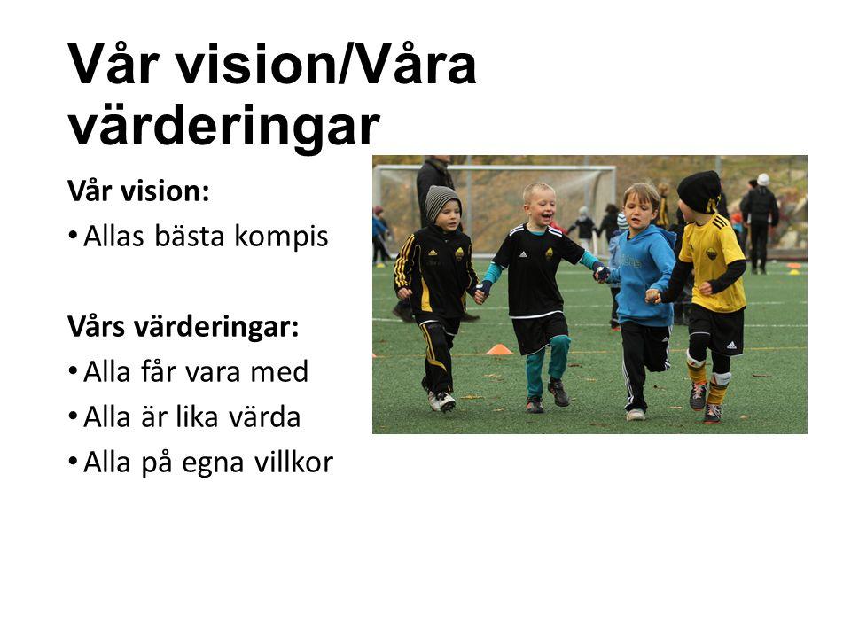 Vår vision/Våra värderingar Vår vision: Allas bästa kompis Vårs värderingar: Alla får vara med Alla är lika värda Alla på egna villkor