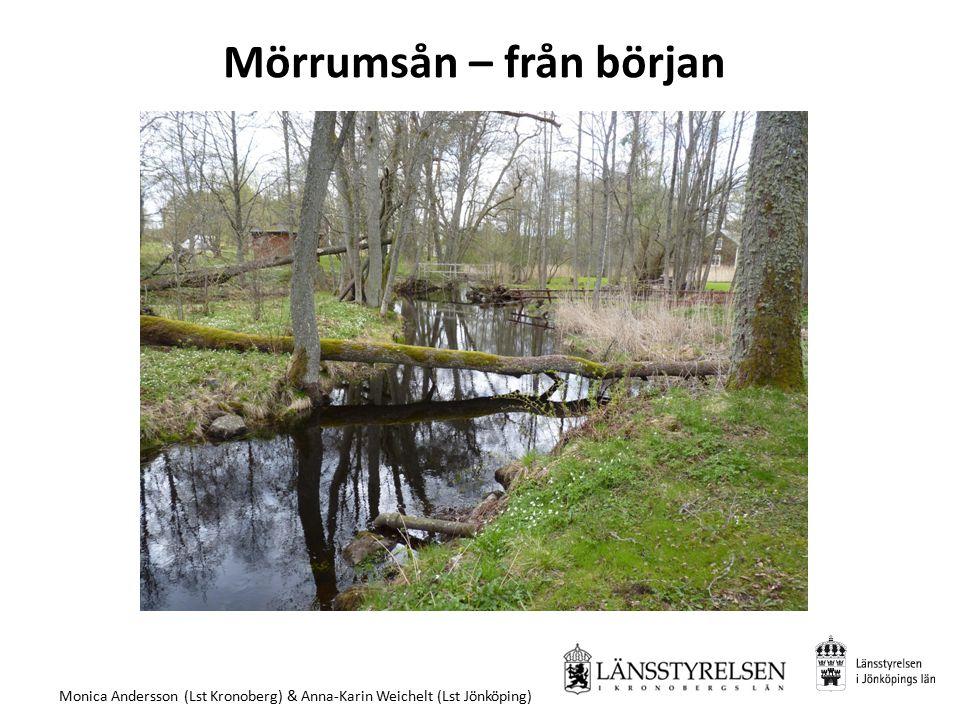 Mörrumsån – från början Monica Andersson (Lst Kronoberg) & Anna-Karin Weichelt (Lst Jönköping)