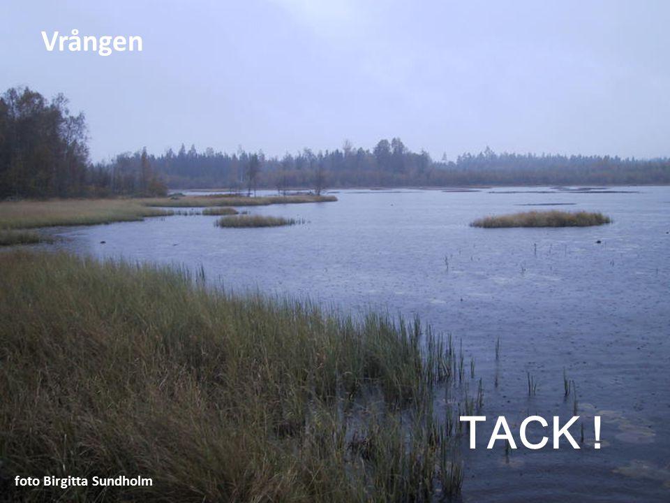 TACK ! foto Birgitta Sundholm Vrången