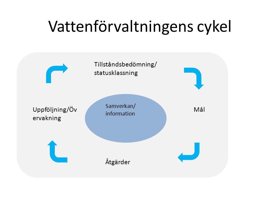 Vattenförvaltningens cykel Tillståndsbedömning/ statusklassning Mål Åtgärder Uppföljning/Öv ervakning Samverkan/ information