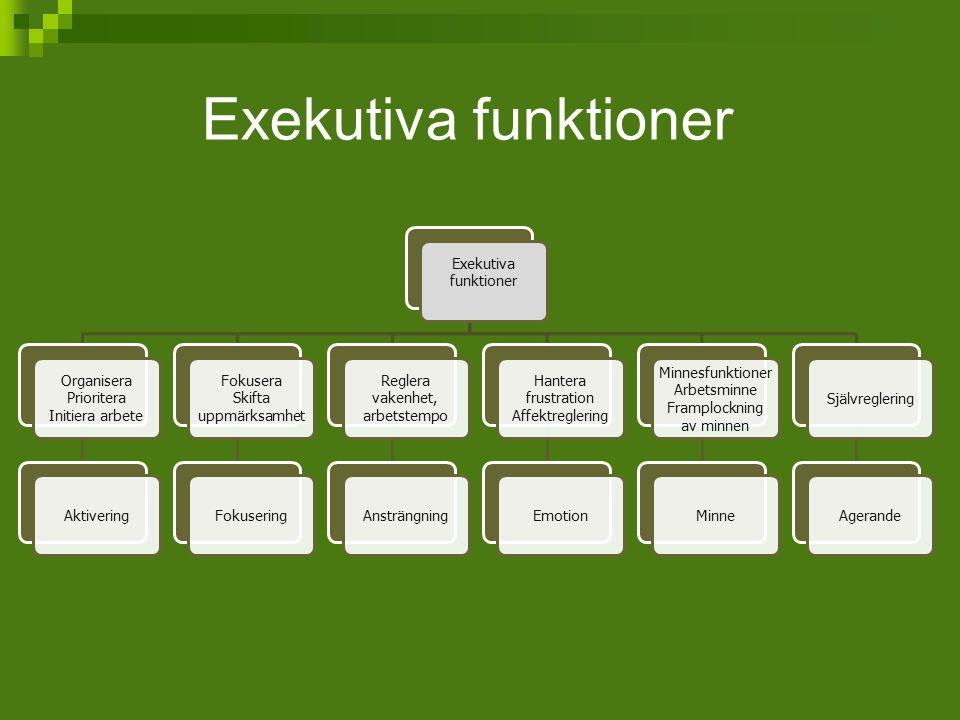Exekutiva funktioner Organisera Prioritera Initiera arbete Aktivering Fokusera Skifta uppmärksamhet Fokusering Reglera vakenhet, arbetstempo Ansträngn