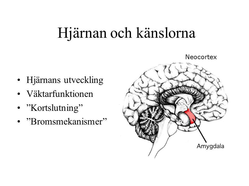 Hjärnan och känslorna Hjärnans utveckling Väktarfunktionen Kortslutning Bromsmekanismer Neocortex