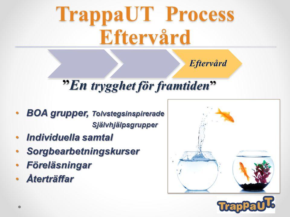 TrappaUT Process Eftervård BOA grupper, TolvstegsinspireradeBOA grupper, Tolvstegsinspirerade Självhjälpsgrupper Självhjälpsgrupper Individuella samta
