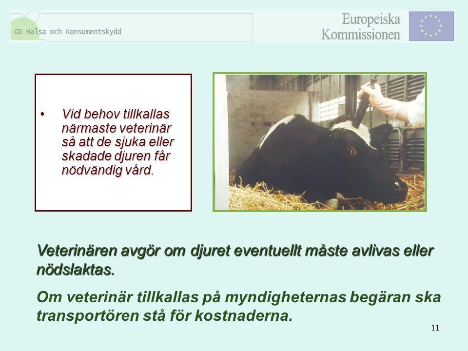11 Vid behov tillkallas närmaste veterinär så att de sjuka eller skadade djuren får nödvändig vård.Vid behov tillkallas närmaste veterinär så att de s