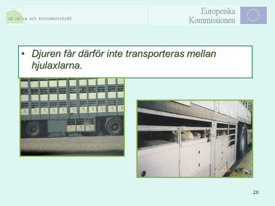 20 Djuren får därför inte transporteras mellan hjulaxlarna.Djuren får därför inte transporteras mellan hjulaxlarna.