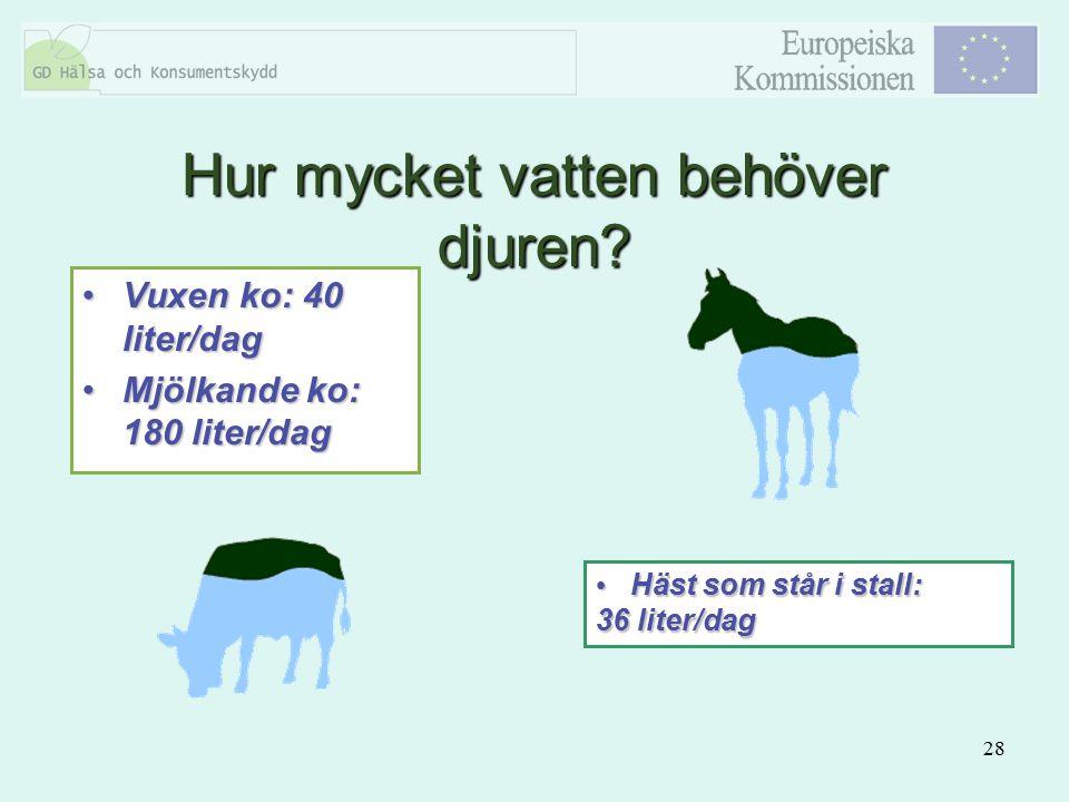 28 Vuxen ko: 40 liter/dagVuxen ko: 40 liter/dag Mjölkande ko: 180 liter/dagMjölkande ko: 180 liter/dag Häst som står i stall: 36 liter/dag Häst som st