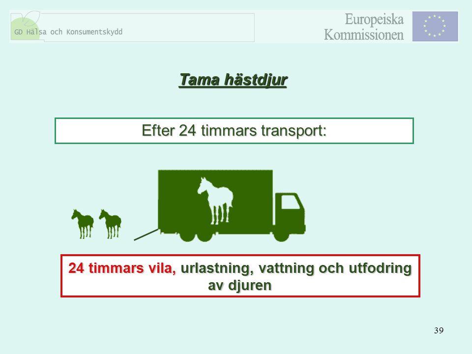 39 Tama hästdjur Efter 24 timmars transport: 24 timmars vila, urlastning, vattning och utfodring av djuren