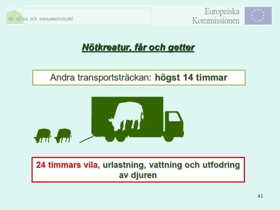 41 Andra transportsträckan: högst 14 timmar 24 timmars vila, urlastning, vattning och utfodring av djuren Nötkreatur, får och getter