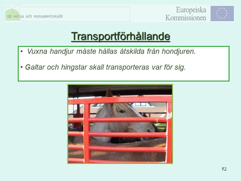 52 Vuxna handjur måste hållas åtskilda från hondjuren. Galtar och hingstar skall transporteras var för sig. Transportförhållande
