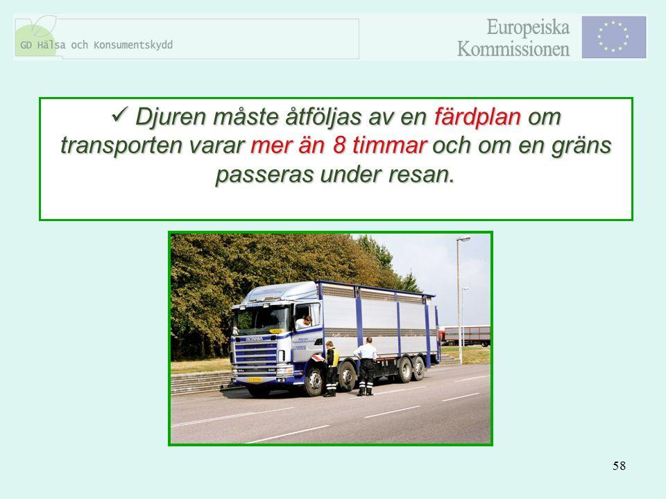 58 Djuren måste åtföljas av en färdplan om transporten varar mer än 8 timmar och om en gräns passeras under resan. Djuren måste åtföljas av en färdpla