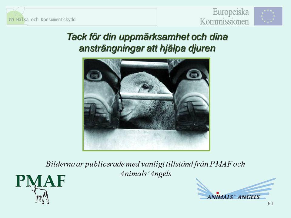 61 Tack för din uppmärksamhet och dina ansträngningar att hjälpa djuren Bilderna är publicerade med vänligt tillstånd från PMAF och Animals'Angels