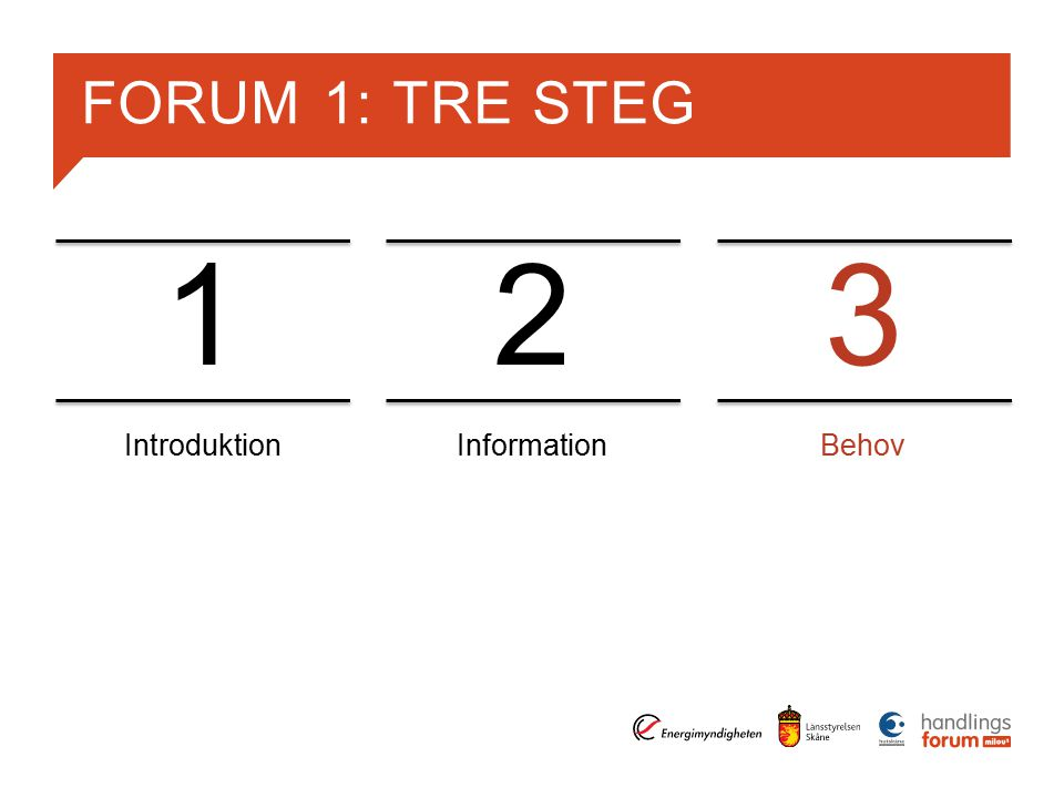 FORUM 1: TRE STEG IntroduktionInformationBehov 123