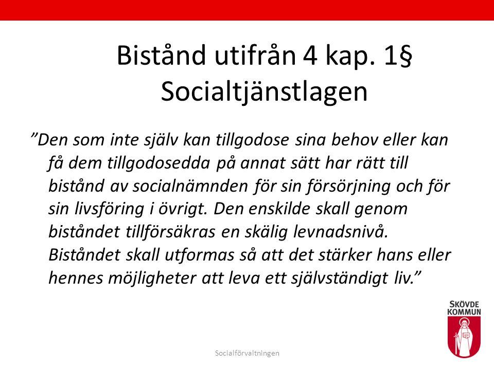 """Bistånd utifrån 4 kap. 1§ Socialtjänstlagen """"Den som inte själv kan tillgodose sina behov eller kan få dem tillgodosedda på annat sätt har rätt till b"""