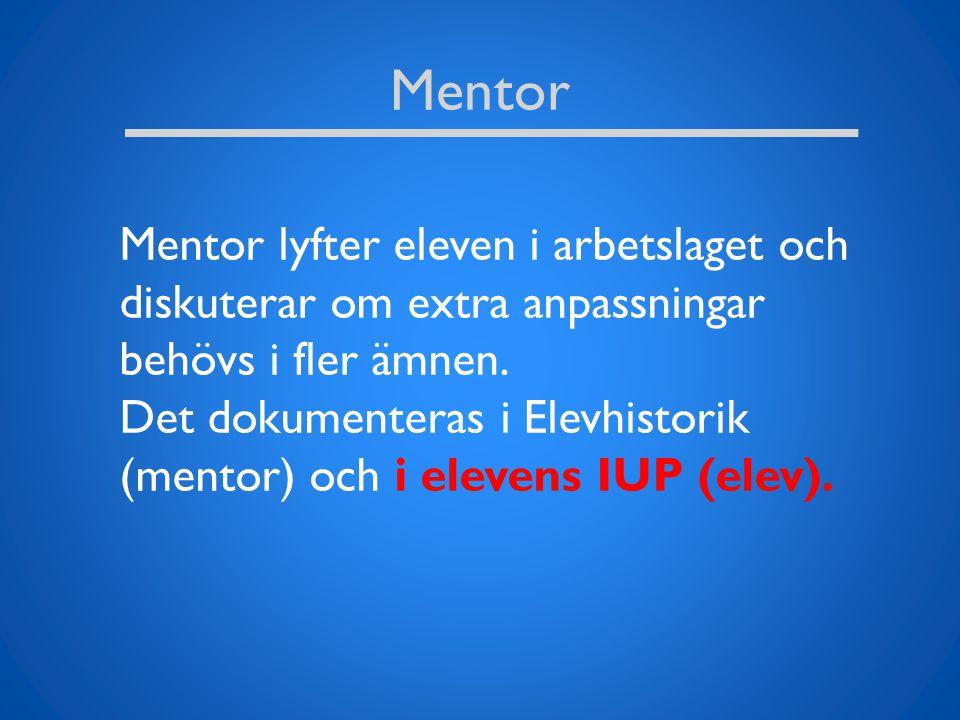 Mentor Mentor lyfter eleven i arbetslaget och diskuterar om extra anpassningar behövs i fler ämnen. Det dokumenteras i Elevhistorik (mentor) och i ele