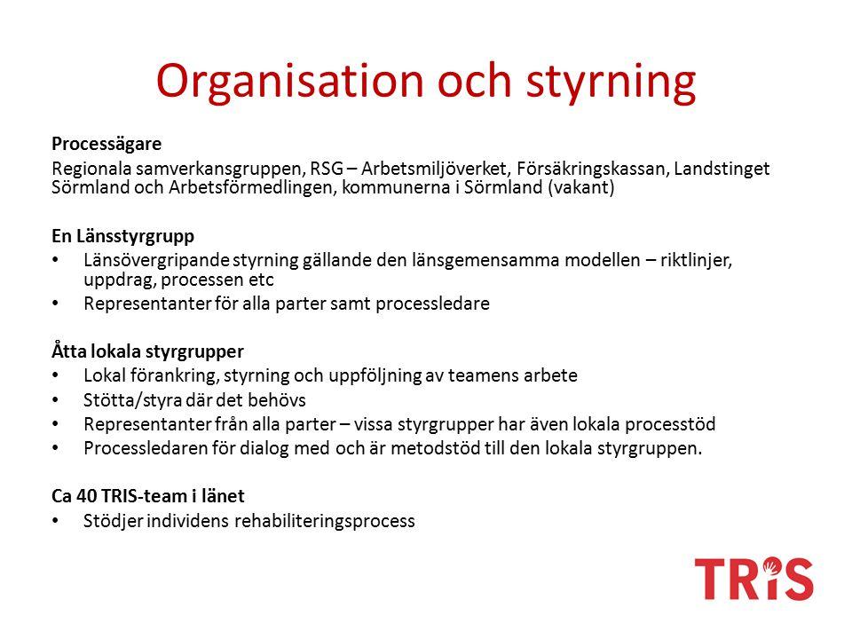 Organisation och styrning Processägare Regionala samverkansgruppen, RSG – Arbetsmiljöverket, Försäkringskassan, Landstinget Sörmland och Arbetsförmedlingen, kommunerna i Sörmland (vakant) En Länsstyrgrupp Länsövergripande styrning gällande den länsgemensamma modellen – riktlinjer, uppdrag, processen etc Representanter för alla parter samt processledare Åtta lokala styrgrupper Lokal förankring, styrning och uppföljning av teamens arbete Stötta/styra där det behövs Representanter från alla parter – vissa styrgrupper har även lokala processtöd Processledaren för dialog med och är metodstöd till den lokala styrgruppen.