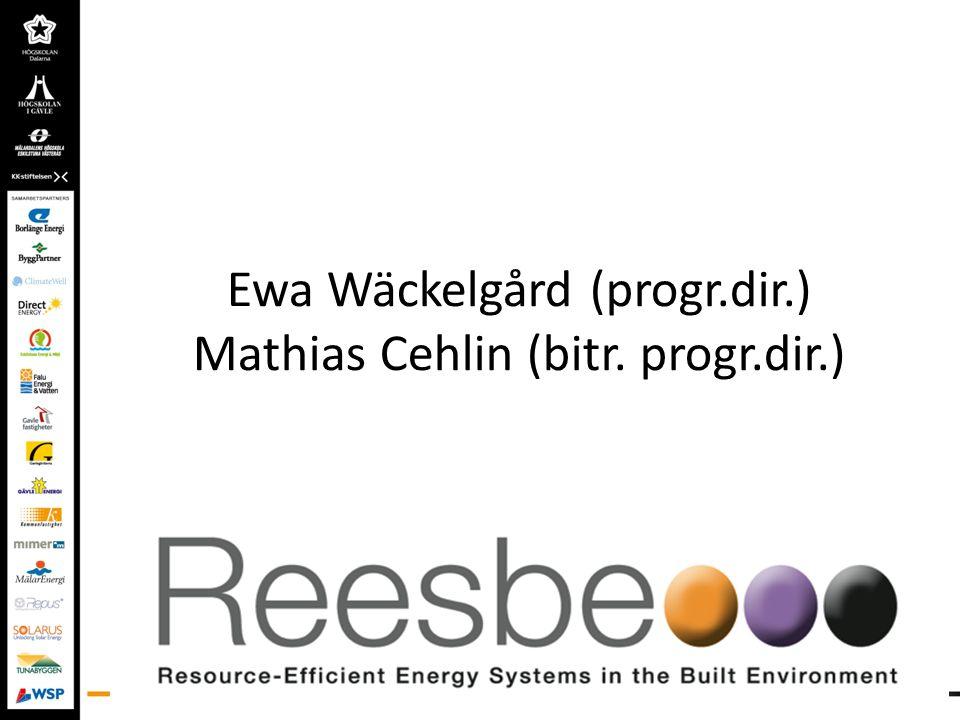 Unikt med Reesbe Kommunala energi och fastighetsbolag I flera fall två företag/doktorand Handledare från två lärosäten/doktorand Tre jämbördiga lärosäten Samverkan mellan tre regioner