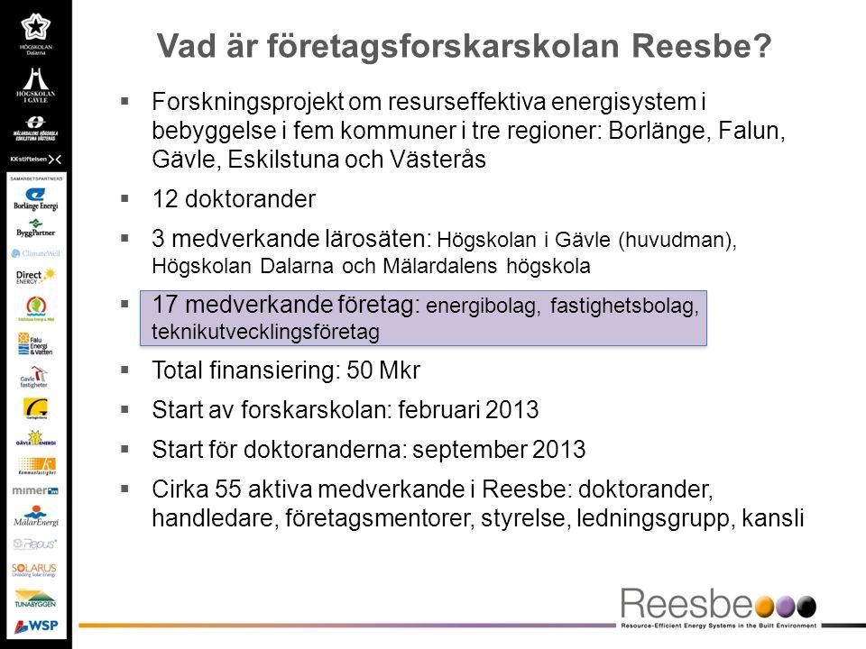  Forskningsprojekt om resurseffektiva energisystem i bebyggelse i fem kommuner i tre regioner: Borlänge, Falun, Gävle, Eskilstuna och Västerås  12 d