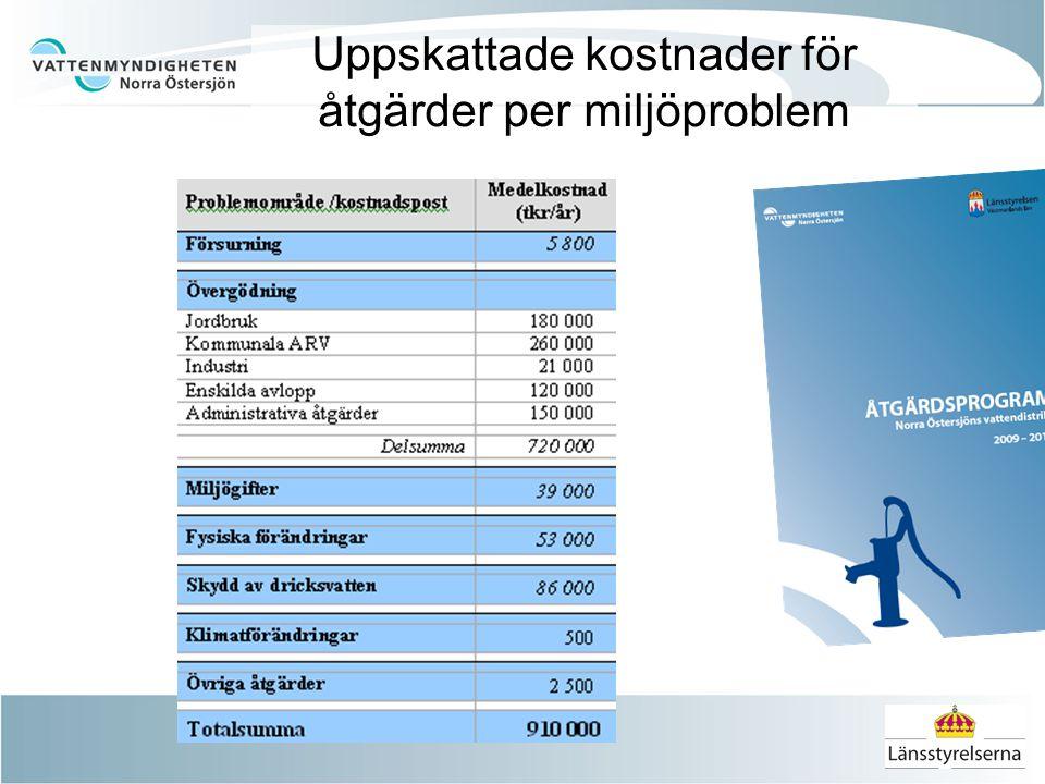 Uppskattade kostnader för åtgärder per miljöproblem