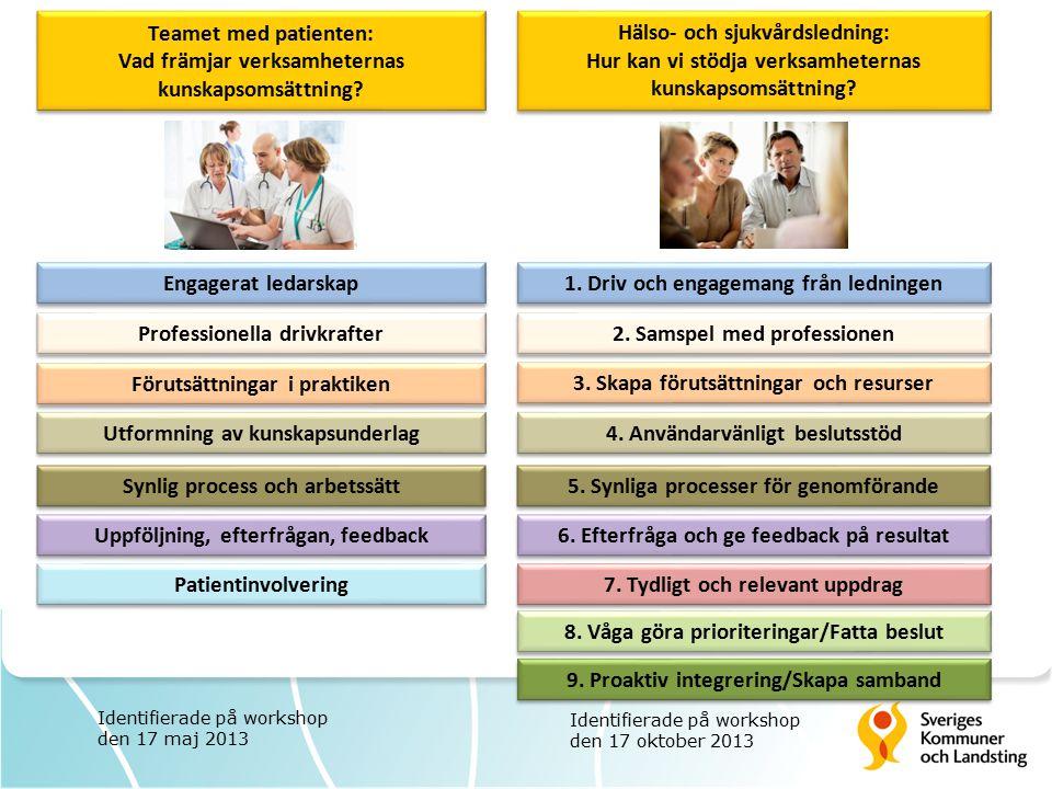 Professionella drivkrafter 1. Driv och engagemang från ledningen Patientinvolvering Förutsättningar i praktiken 3. Skapa förutsättningar och resurser