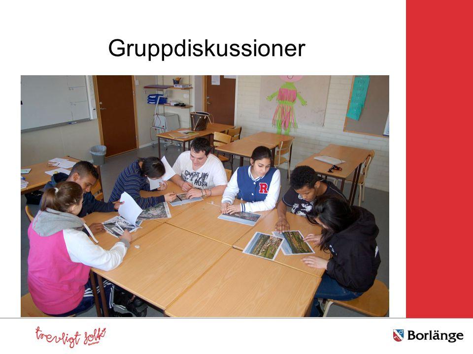 Gruppdiskussioner