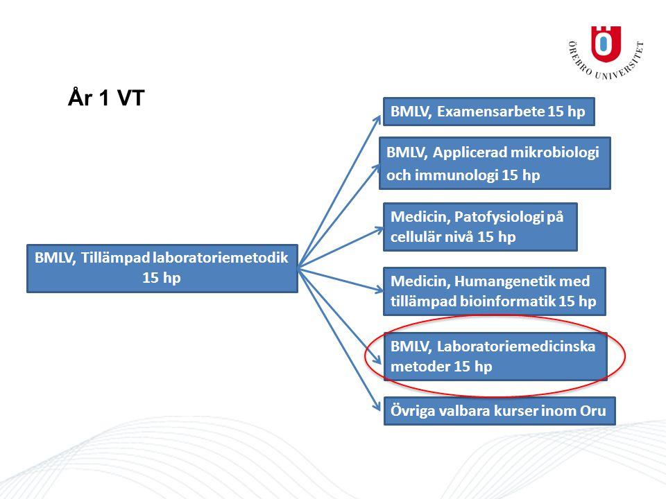 År 1 VT BMLV, Tillämpad laboratoriemetodik 15 hp BMLV, Examensarbete 15 hp BMLV, Applicerad mikrobiologi och immunologi 15 hp Medicin, Patofysiologi på cellulär nivå 15 hp Medicin, Humangenetik med tillämpad bioinformatik 15 hp Övriga valbara kurser inom Oru BMLV, Laboratoriemedicinska metoder 15 hp