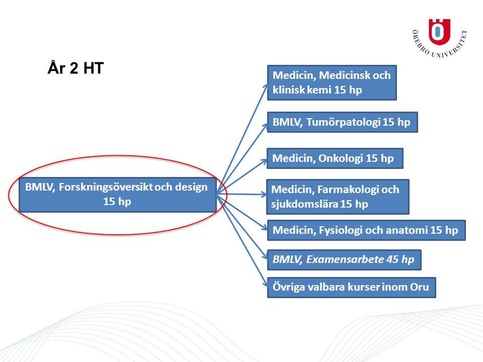 År 2 HT BMLV, Forskningsöversikt och design 15 hp Medicin, Medicinsk och klinisk kemi 15 hp BMLV, Examensarbete 45 hp Övriga valbara kurser inom Oru BMLV, Tumörpatologi 15 hp Medicin, Farmakologi och sjukdomslära 15 hp Medicin, Onkologi 15 hp Medicin, Fysiologi och anatomi 15 hp