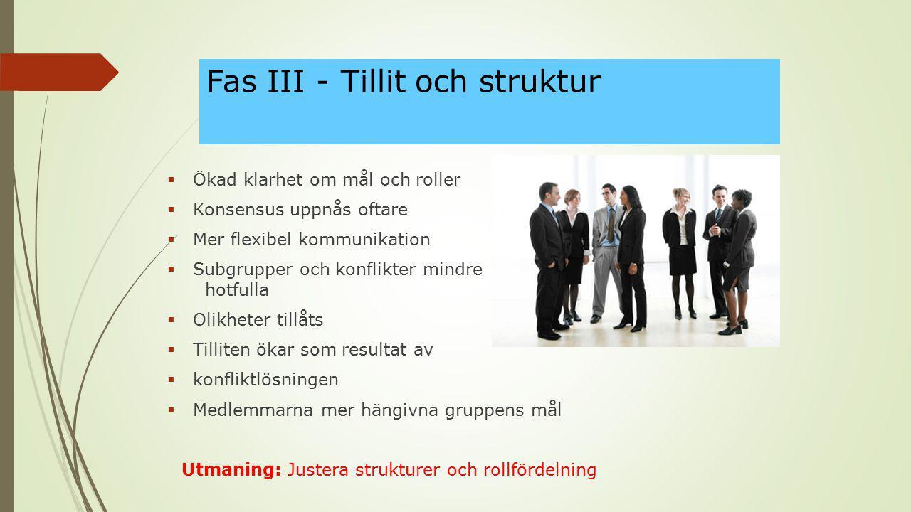 Fas III - Tillit och struktur  Ökad klarhet om mål och roller  Konsensus uppnås oftare  Mer flexibel kommunikation  Subgrupper och konflikter mind