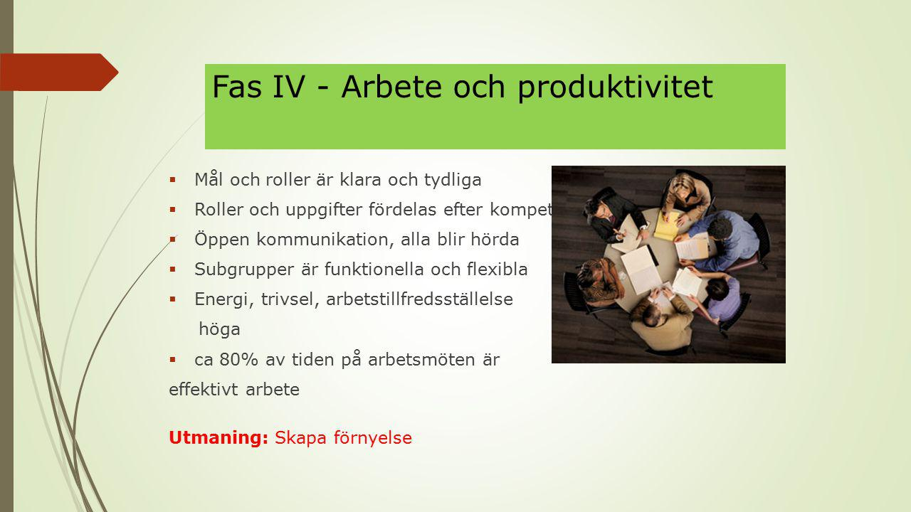 Fas IV - Arbete och produktivitet  Mål och roller är klara och tydliga  Roller och uppgifter fördelas efter kompetens  Öppen kommunikation, alla blir hörda  Subgrupper är funktionella och flexibla  Energi, trivsel, arbetstillfredsställelse höga  ca 80% av tiden på arbetsmöten är effektivt arbete Utmaning: Skapa förnyelse