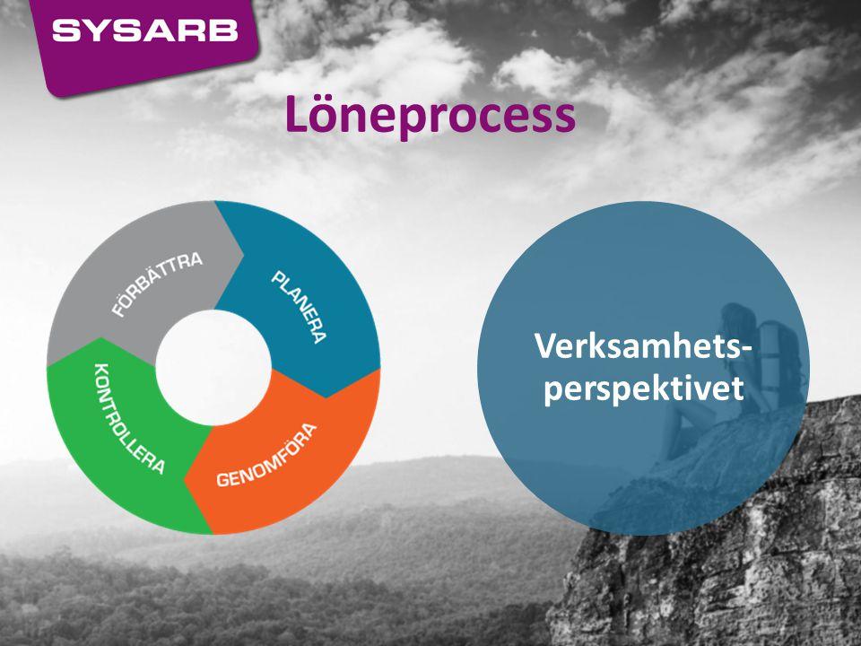 Löneprocess Verksamhets- perspektivet