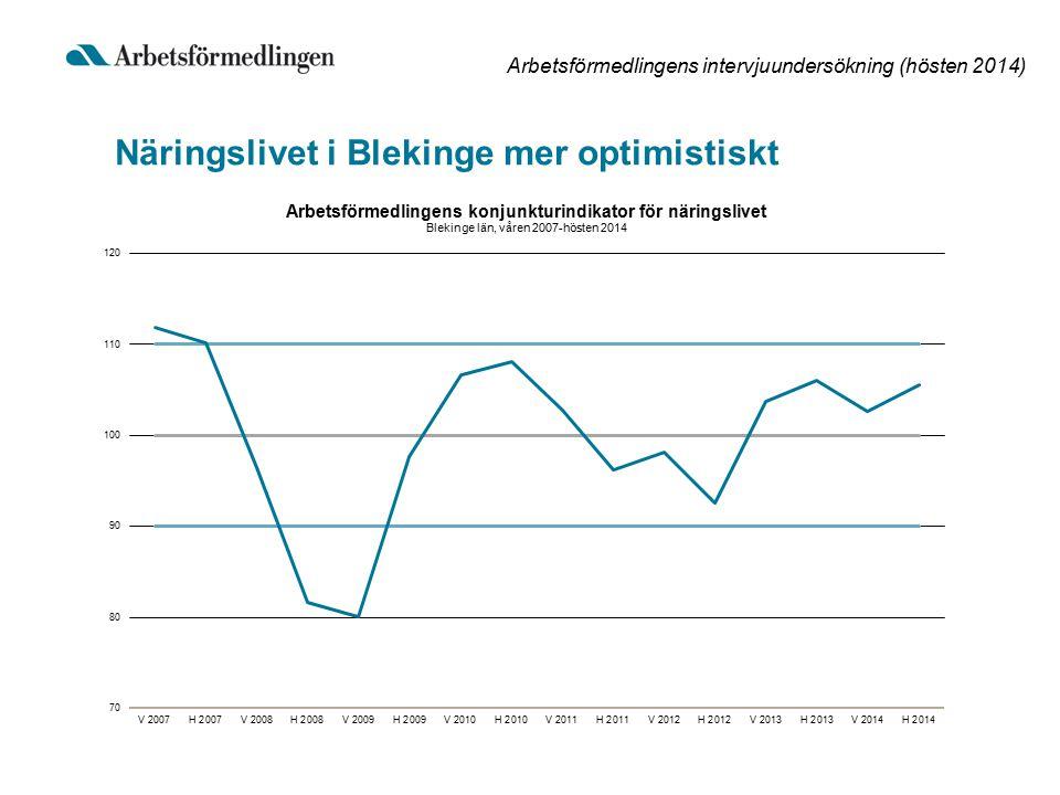 Arbetsförmedlingens intervjuundersökning (hösten 2014) Sysselsättningen i Blekinge tar fart under andra halvåret 2015 Årets sysselsättningsökning upprepas efter en stark avslutning på 2015 + 600 personer 2014 (+ 0,9 %) + 600 personer 2015 (+ 0,9 %) 