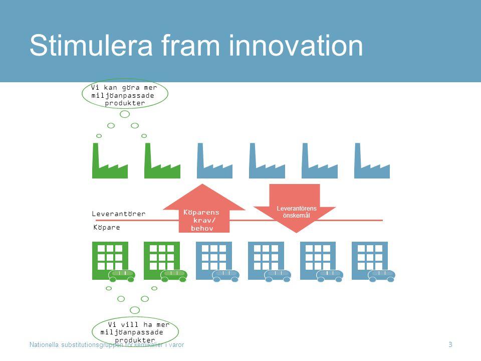 Stimulera fram innovation Nationella substitutionsgruppen för kemikalier i varor 3