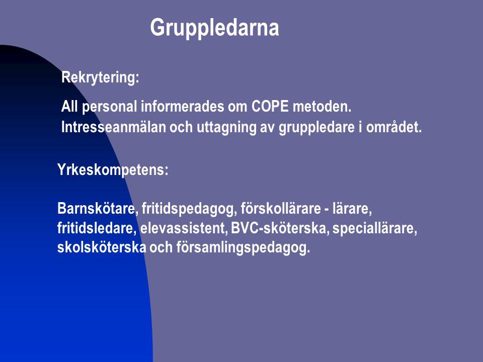 Gruppledarnas COPE-utbildning Workshop med Cunningham två dagar och en kompletterande dag med Peter Thunström.