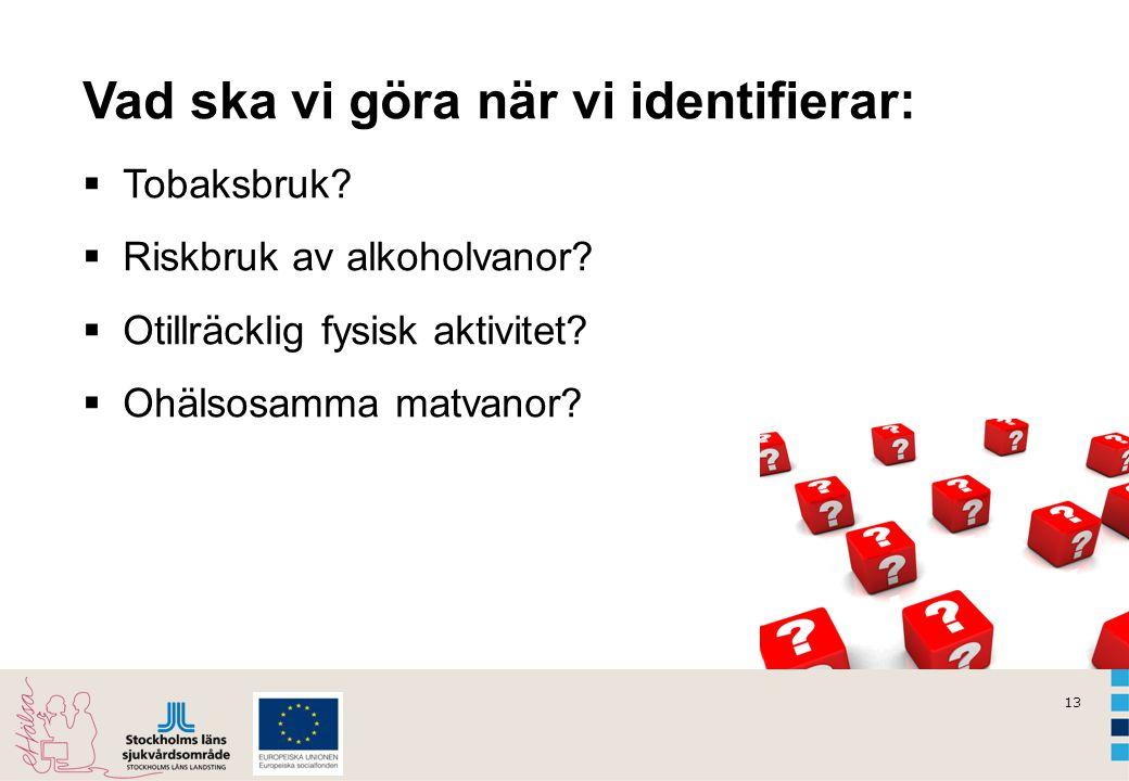 13 Vad ska vi göra när vi identifierar:  Tobaksbruk?  Riskbruk av alkoholvanor?  Otillräcklig fysisk aktivitet?  Ohälsosamma matvanor?