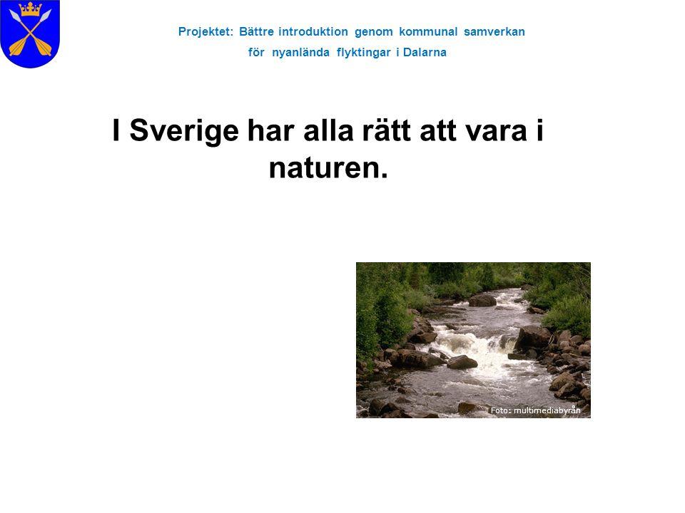 Projektet: Bättre introduktion genom kommunal samverkan för nyanlända flyktingar i Dalarna Foto: multimediabyrån I Sverige har alla rätt att vara i na