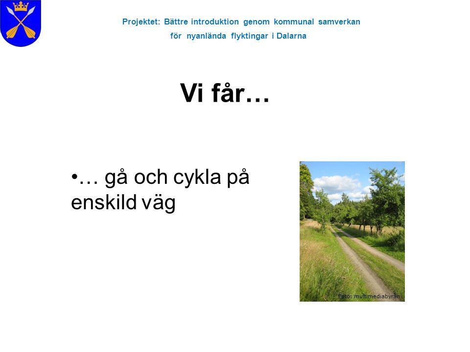 Projektet: Bättre introduktion genom kommunal samverkan för nyanlända flyktingar i Dalarna Vi får… Foto: multimediabyrån … gå och cykla på enskild väg